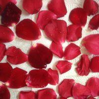עלי-ורדים