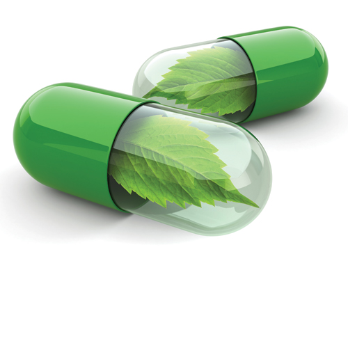 צמחים-תוספי-תזונה-וצמחי-מרפא